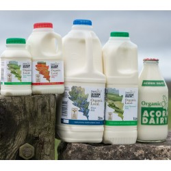 SEMI-SKIMMED MILK - GLASS  (Acorn Dairy) 1 pint