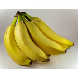 BANANAS (Dominican Republic) 500g