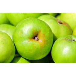 APPLES - BRAMLEY (UK) 650g