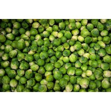 BRUSSEL SPROUTS (UK) 500g