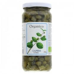 CAPERS (Organico) 100g