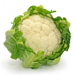 CAULIFLOWER (UK)