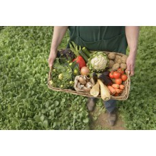 VEGETABLE BOX - LARGE