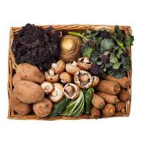 FARM BOX