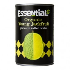 JACKFRUIT - IN SALTED WATER (Essential) 400g