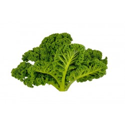 KALE - GREEN (Farm) 200g
