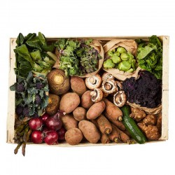 FARM BOX - LARGE