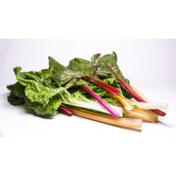MIXED CHARD (Farm) 200g