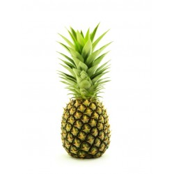 PINEAPPLE (Ivory Coast)