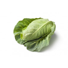 CABBAGE - POINTED (Farm)