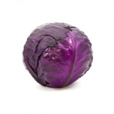 CABBAGE - RED (NL)