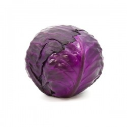 CABBAGE - RED  (UK)