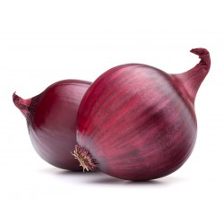 ONIONS - RED (Spain) 500g