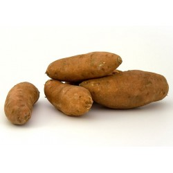 SWEET POTATOES (Spain) 650g