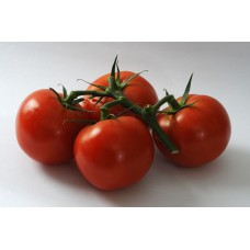 TOMATOES ON THE VINE (UK) 500g