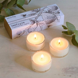 WILD FIG LARGE - TEA LIGHTS (Bee Fayre)